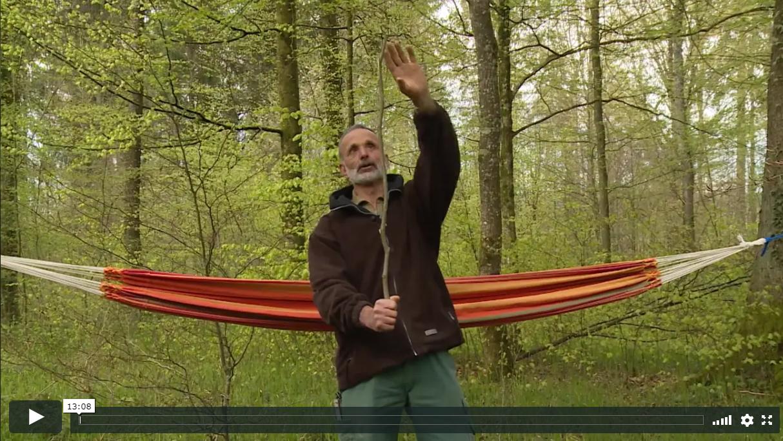 Videodokumentation Wald Bürgergemeinde Basadingen-Schlattingen